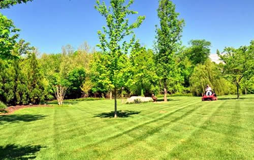 Lawn Care De Pere Wi Landscape Design Blue Grass Lawns